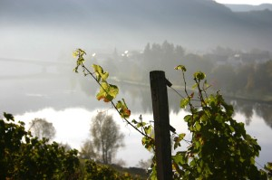 Romantic Untermosel