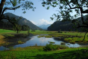 Mariagern – mountain meadows in the Berchtesgadener Land Biosphere