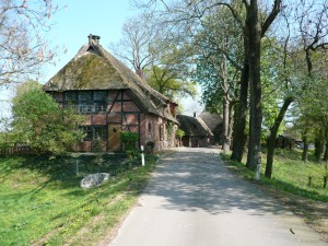 Schleusenow: Typical thatched roof houses in the polder and levee landscape of Teldau