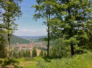 Idyllic scenery in the Odenwald forest with picturesque villages, lush meadows and sparse mixed woodland