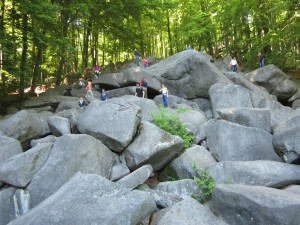The Lauertal valley boulder field, a popular destination and a paradise for climbers of all ages