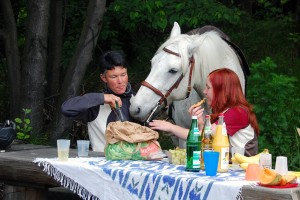 Picnic with horse at Rachelshausen quarry