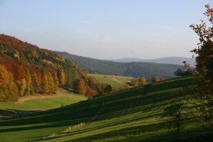 Meadow valley with autumnal broadleaf forest in the evening light