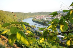 The Neckar loop