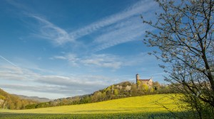 Ludwigstein Castle and the rapeseed field