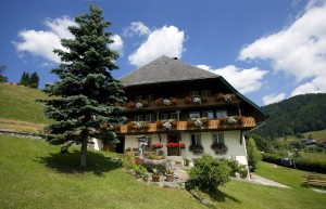 Todtmoos, typical Black Forest house