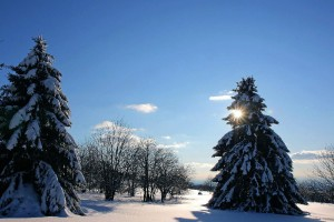 Vogelsberg hills, Winter wonderland