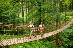 Bingen, hikers on a plank bridge in the Kreuzbach ravine