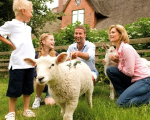 Schleswig-Holstein, enjoying a farm holiday