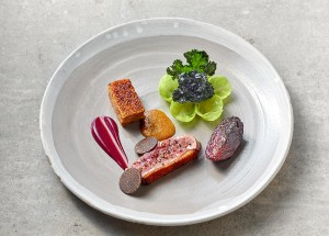 Duck with red cabbage and blackthorn