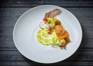 Scallops with avocado, algae and young sea kale