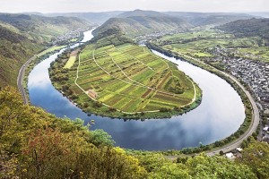 The Moselle wine region