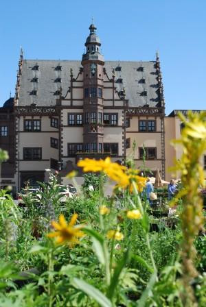 Schweinfurt: Town hall and flower market