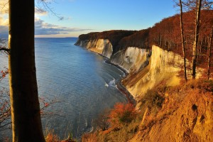 Autumnal chalk cliffs