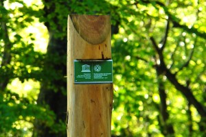 UNESCO World Heritage Ancient Beech Forests, signage