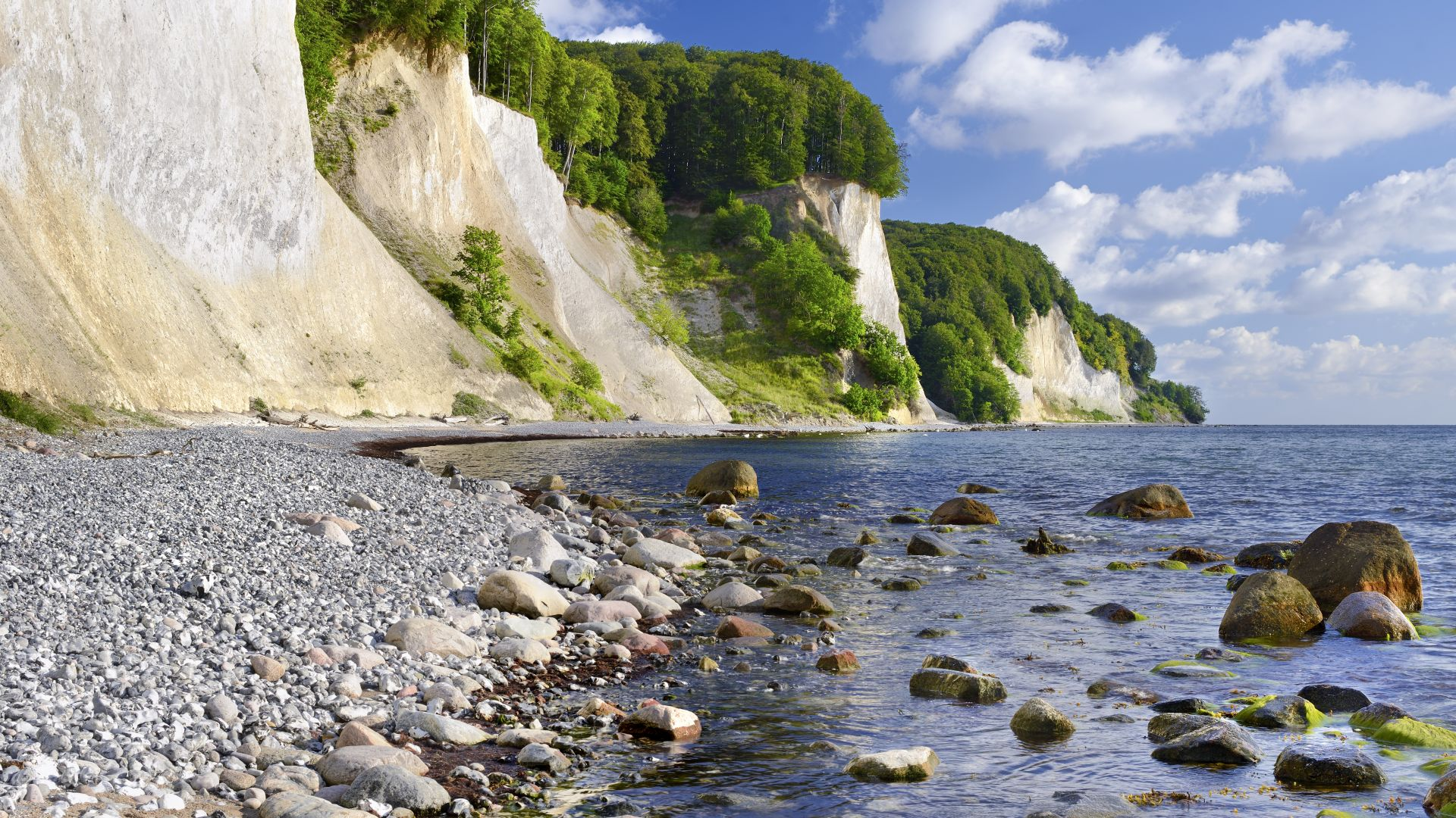 Rügen: Kreidefelsen im Nationalpark Jasmund