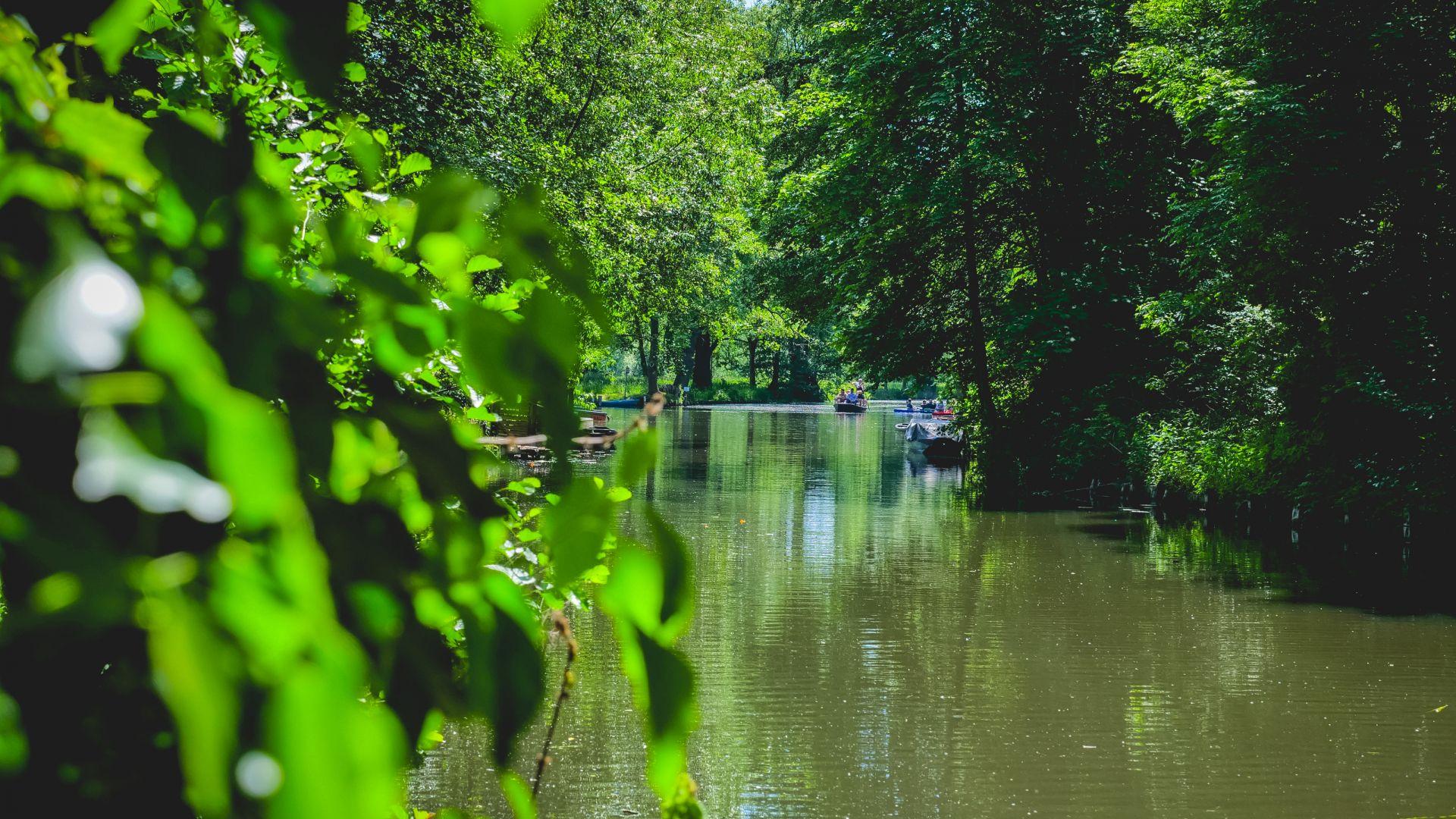 Lübbenau: View of a busy canal