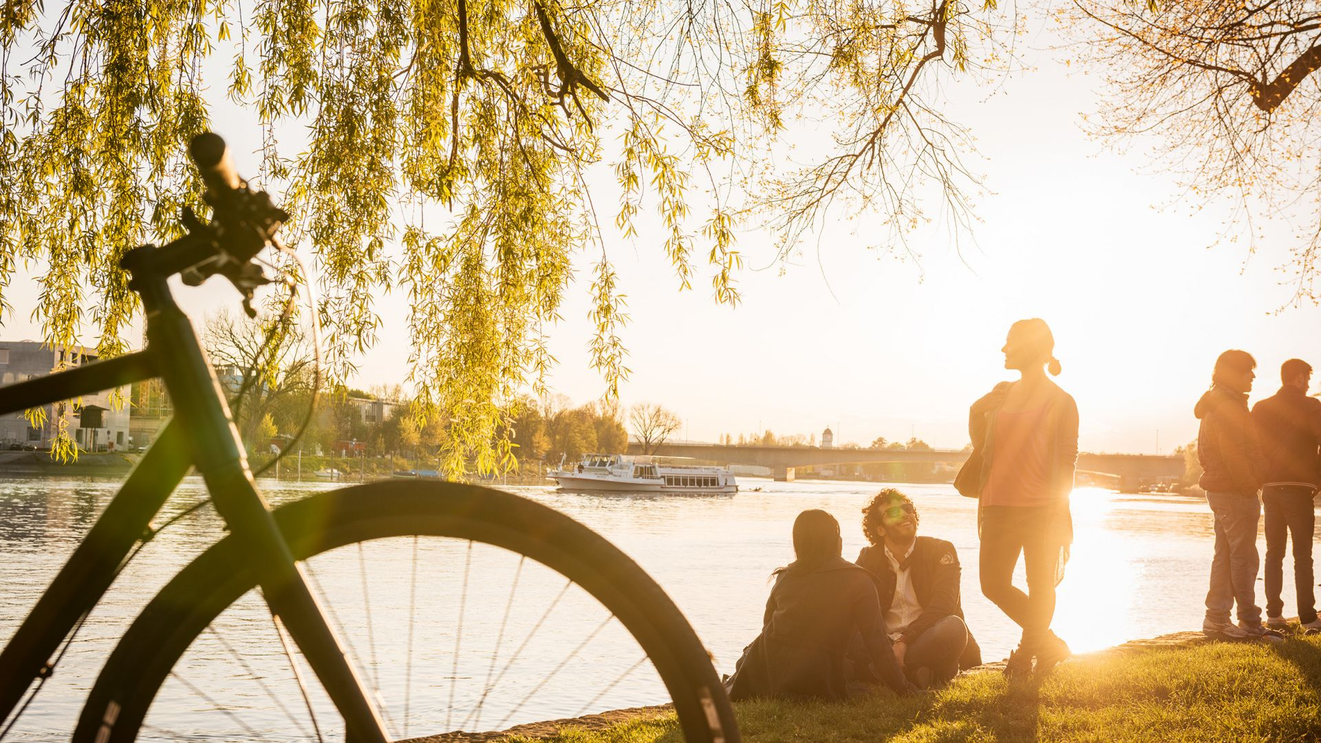 Lake Constance: Relaxing on the shore in the evening sun