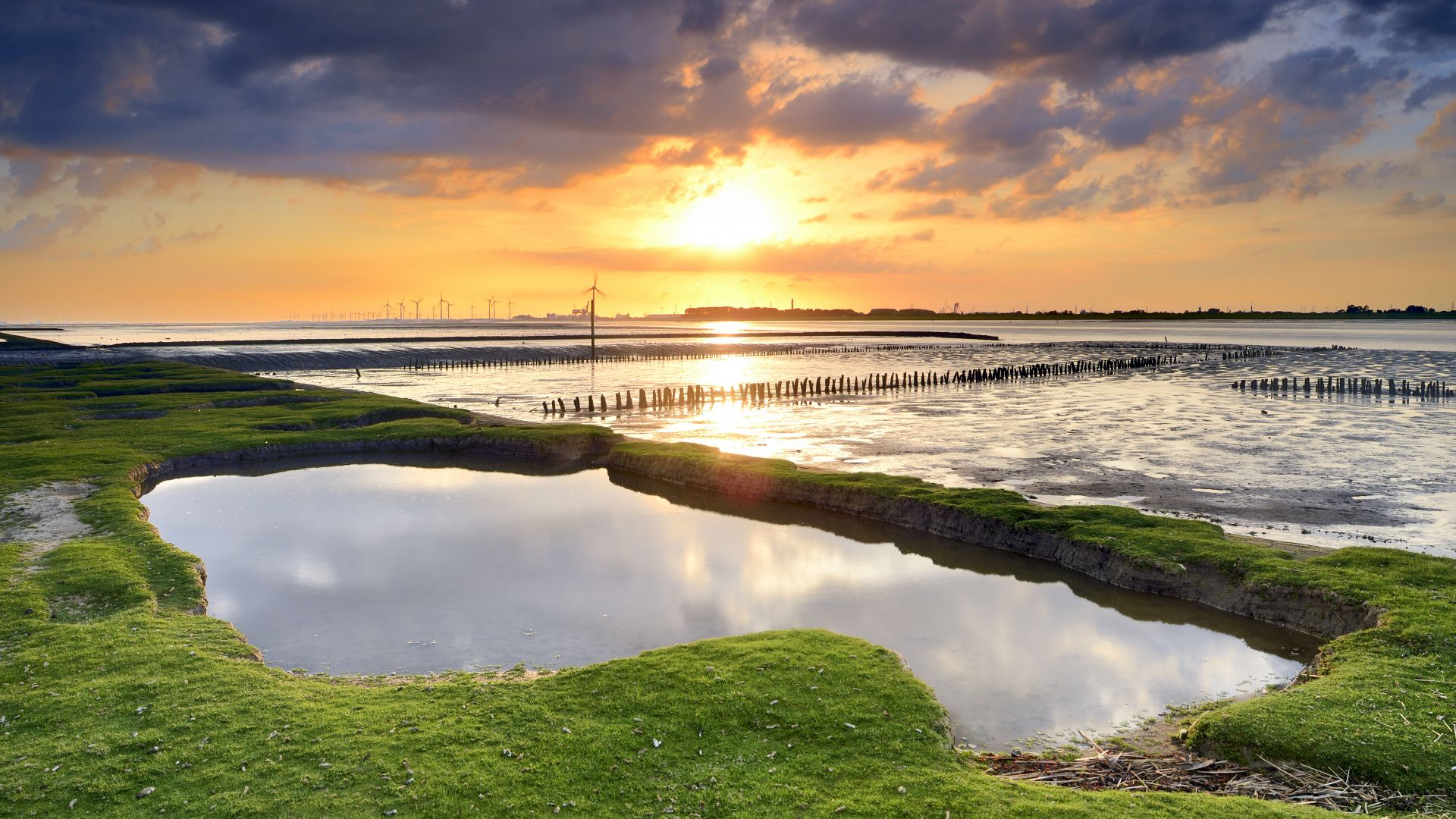 Dollern: View of the sunny mudflats in the Lower Saxony Wadden Sea National Park